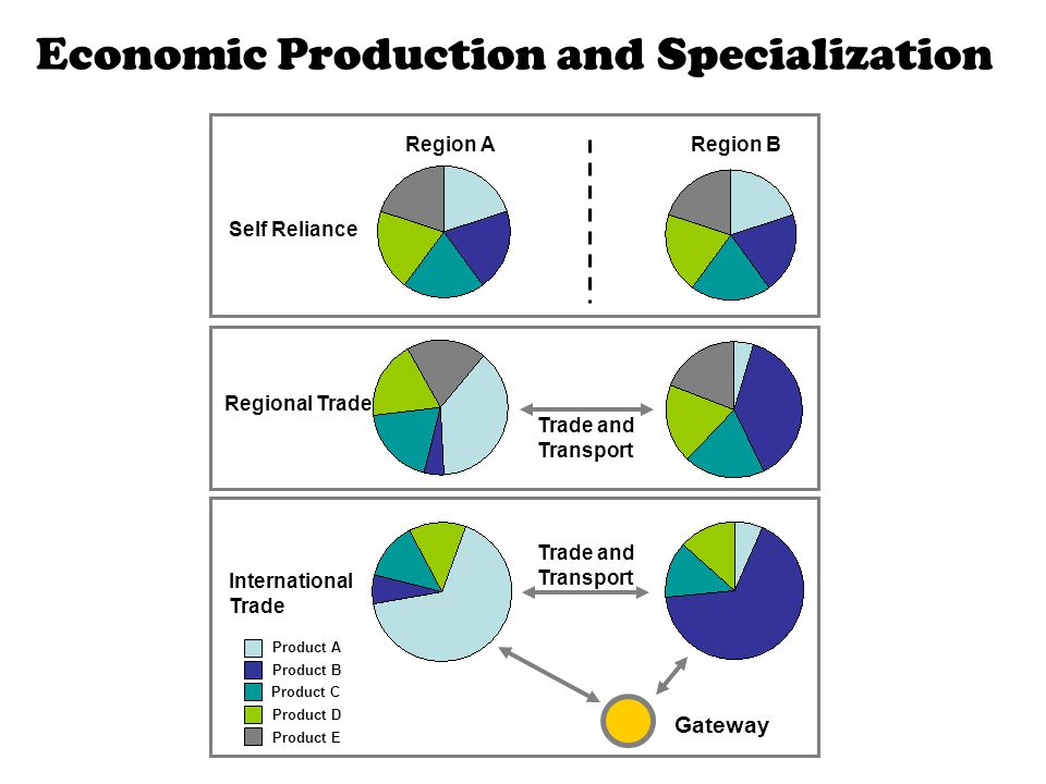 Economic Production and Specialization