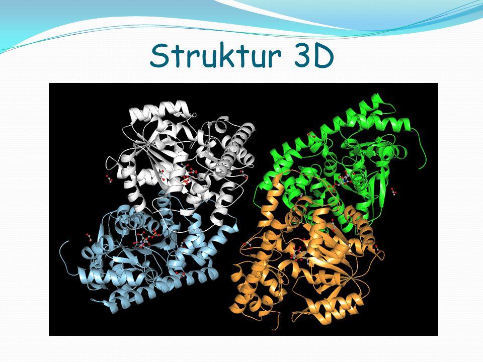 Struktur 3D
