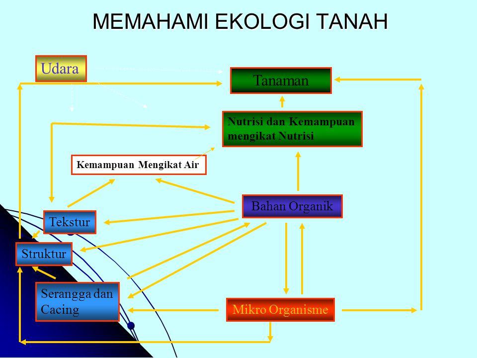 MEMAHAMI EKOLOGI TANAH