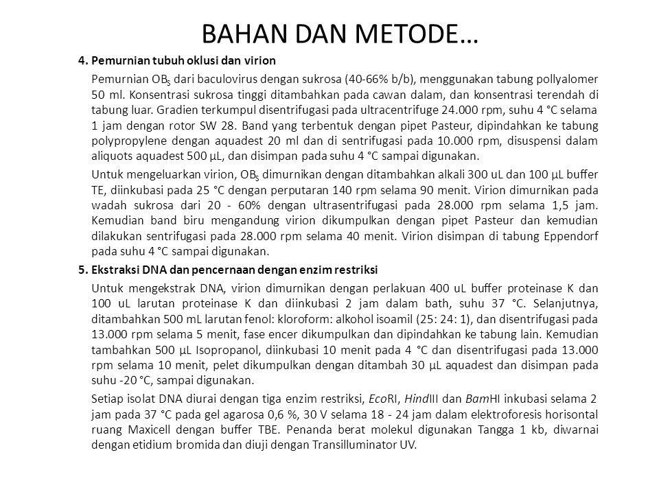 BAHAN DAN METODE… 4. Pemurnian tubuh oklusi dan virion