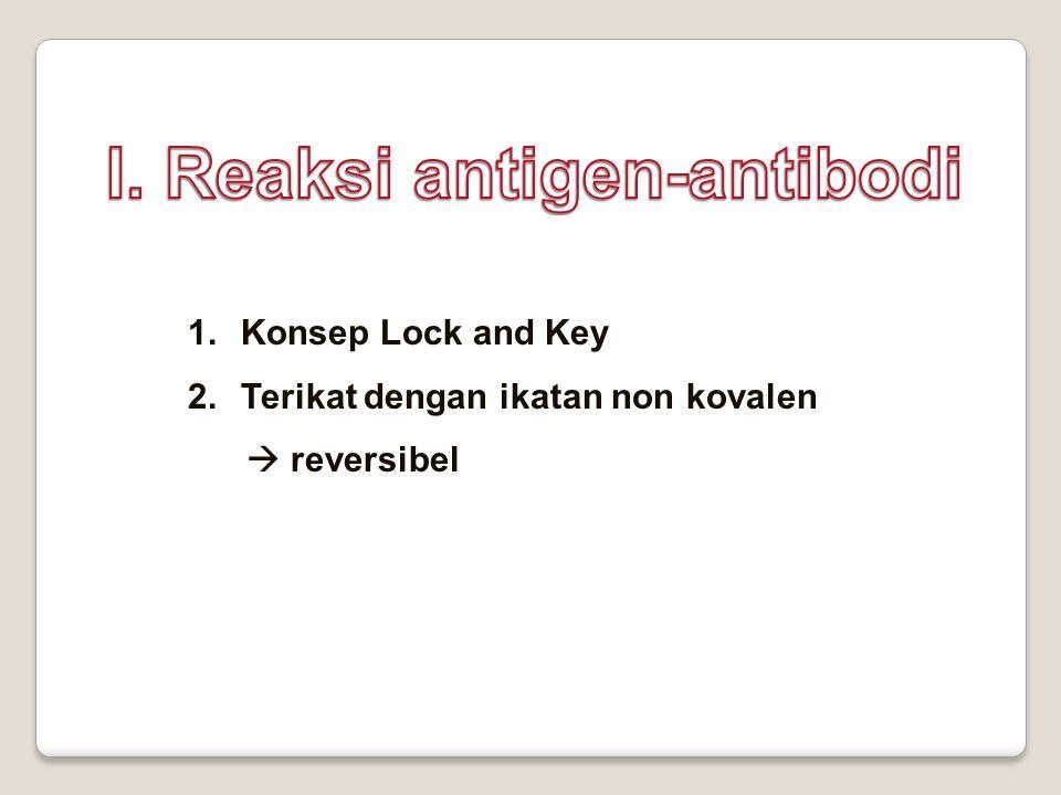 I. Reaksi antigen-antibodi