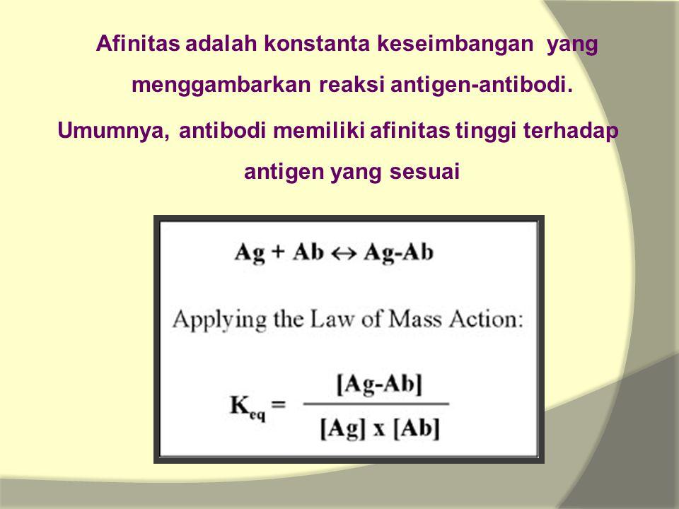 Afinitas adalah konstanta keseimbangan yang menggambarkan reaksi antigen-antibodi.