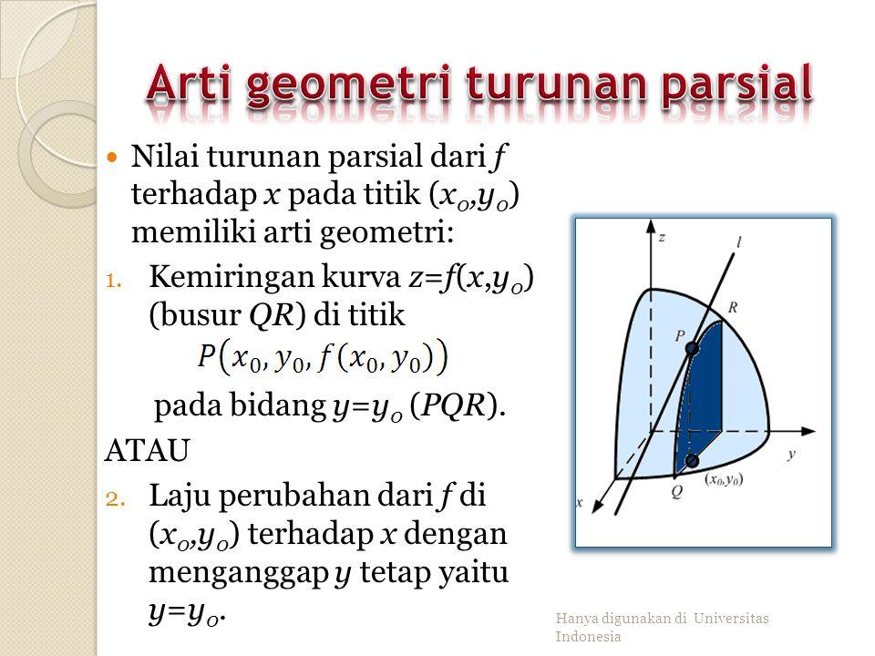 Arti geometri turunan parsial
