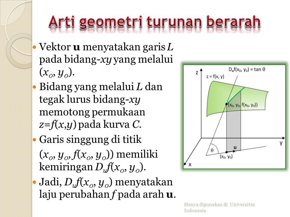 Arti geometri turunan berarah