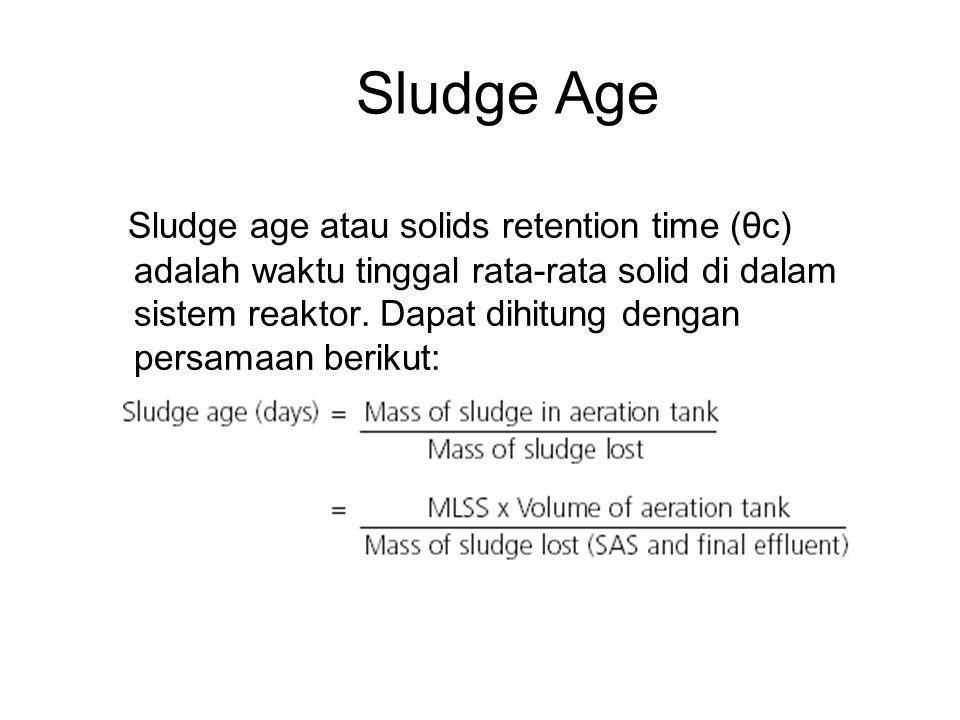 Sludge Age