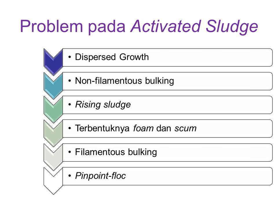 Problem pada Activated Sludge