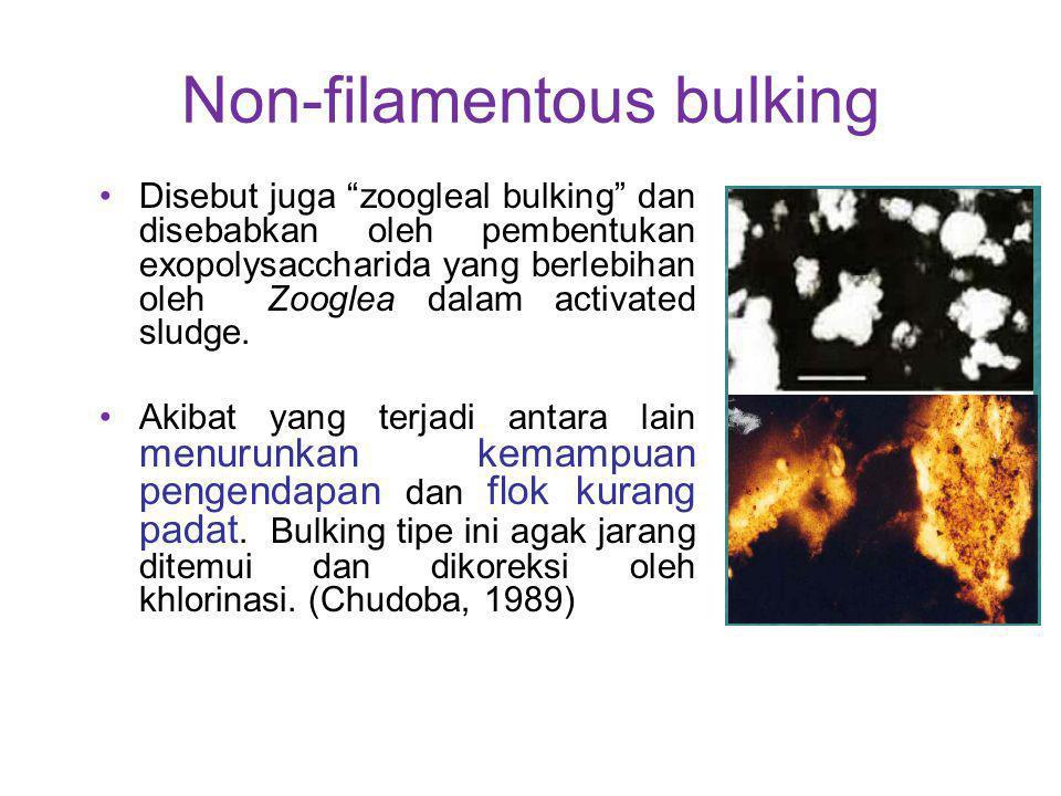 Non-filamentous bulking