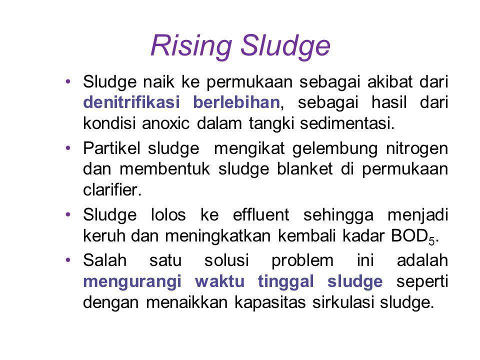 Rising Sludge Sludge naik ke permukaan sebagai akibat dari denitrifikasi berlebihan, sebagai hasil dari kondisi anoxic dalam tangki sedimentasi.