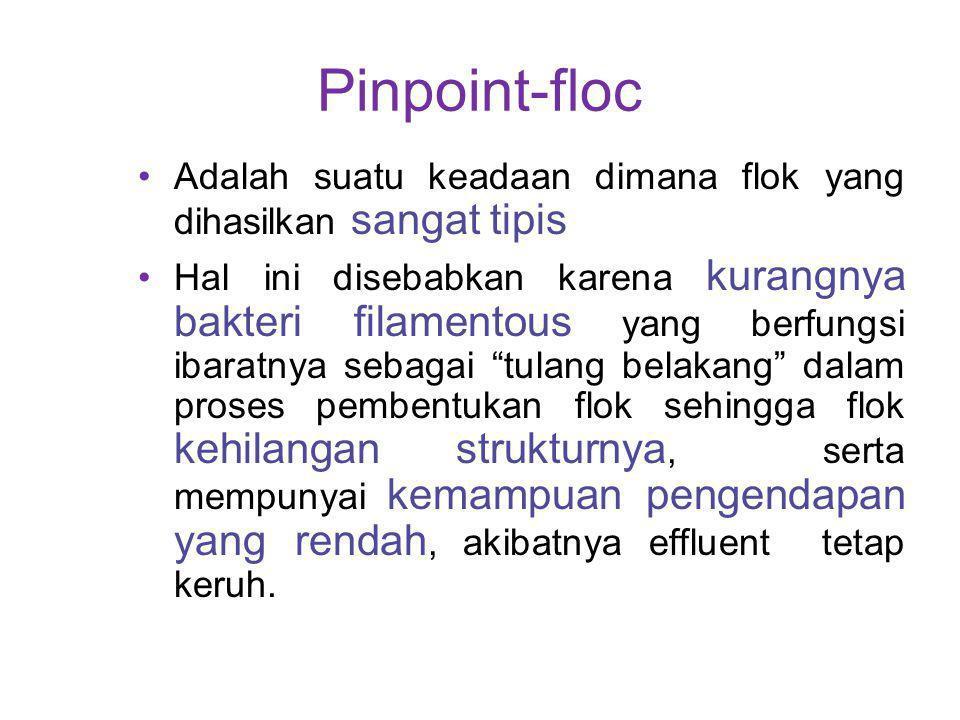 Pinpoint-floc Adalah suatu keadaan dimana flok yang dihasilkan sangat tipis.