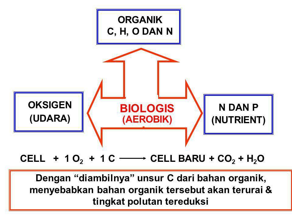 BIOLOGIS ORGANIK C, H, O DAN N OKSIGEN N DAN P (UDARA) (NUTRIENT)