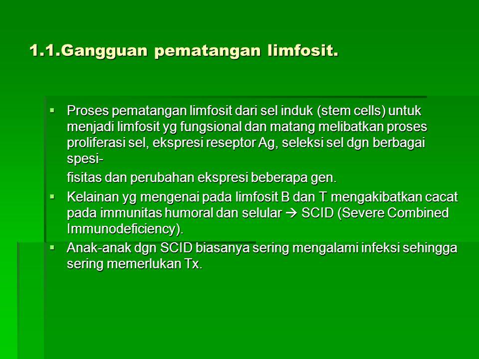 1.1.Gangguan pematangan limfosit.