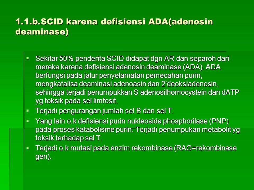 1.1.b.SCID karena defisiensi ADA(adenosin deaminase)