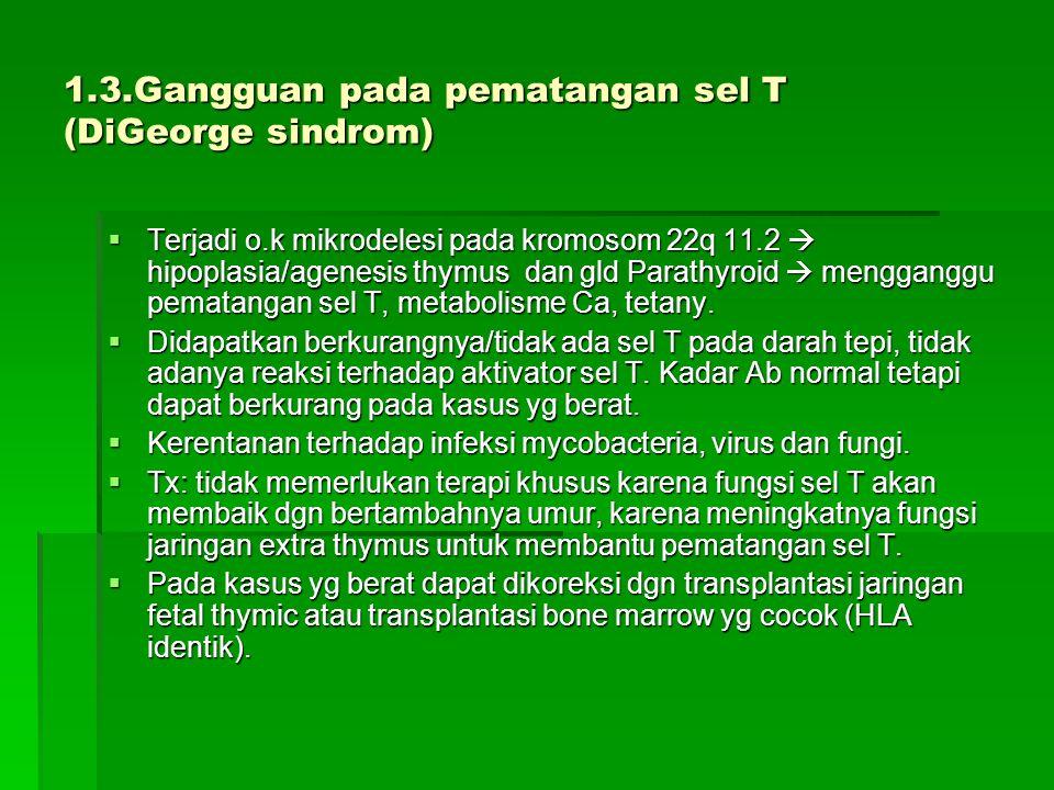 1.3.Gangguan pada pematangan sel T (DiGeorge sindrom)