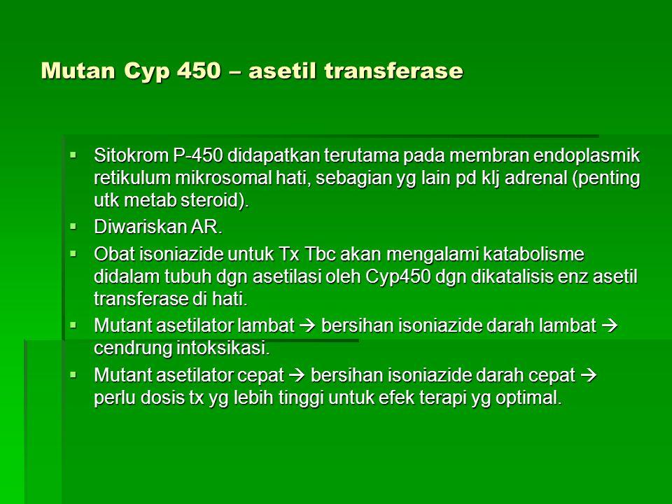 Mutan Cyp 450 – asetil transferase
