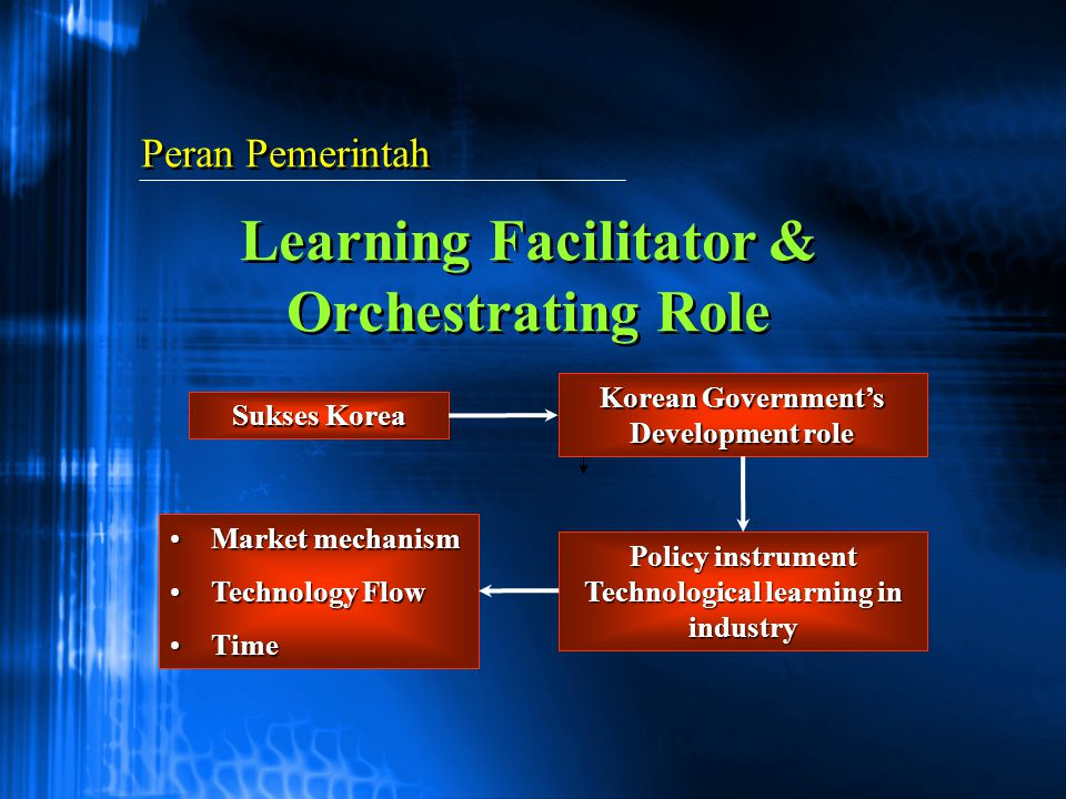 Learning Facilitator & Orchestrating Role