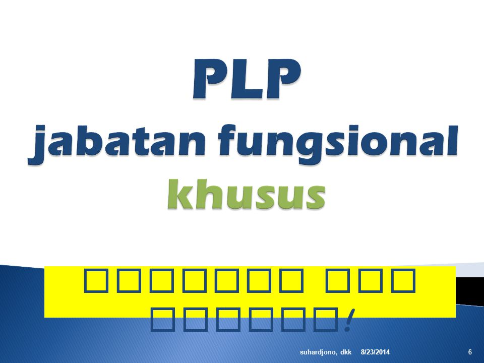 PLP jabatan fungsional khusus
