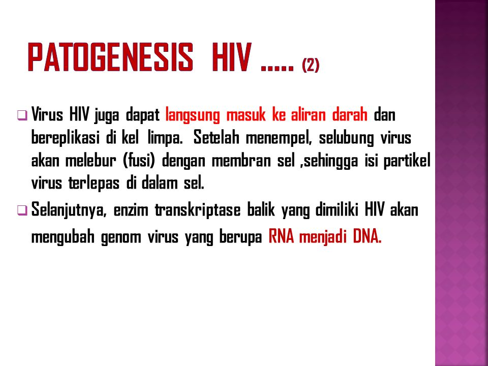 Patogenesis HIV ….. (2)