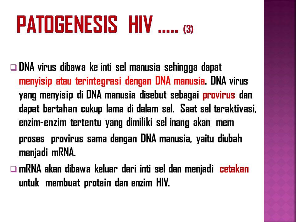 Patogenesis HIV ….. (3)