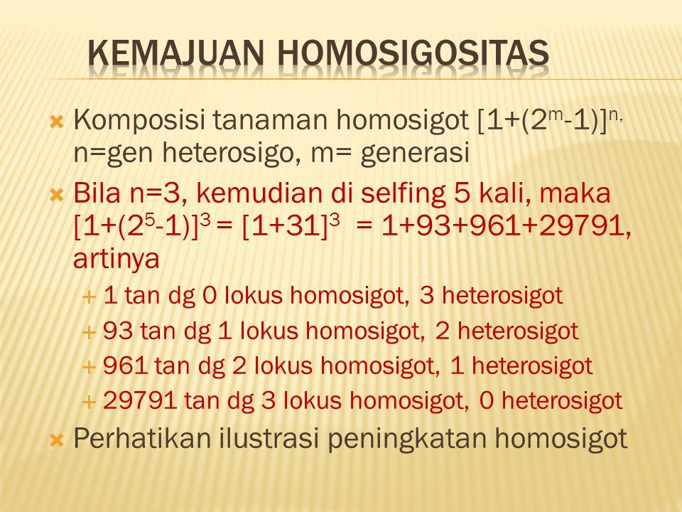 Kemajuan homosigositas