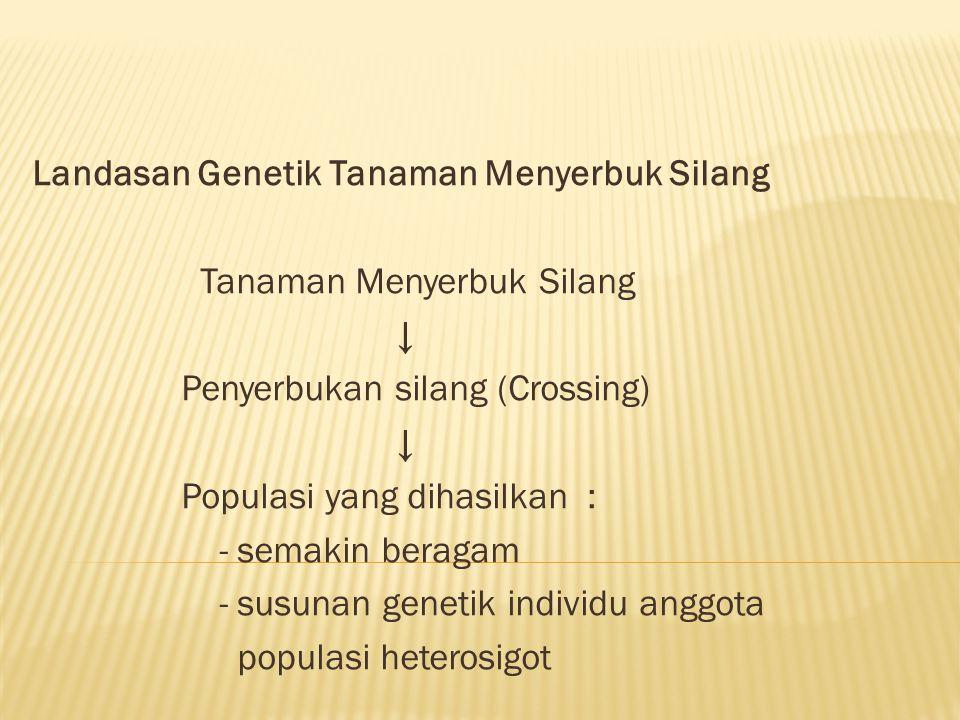 Landasan Genetik Tanaman Menyerbuk Silang