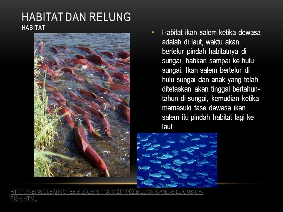 Habitat dan relung Habitat.