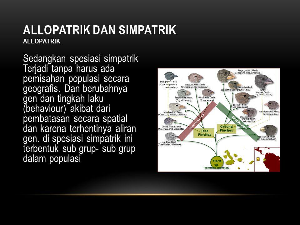 Allopatrik dan Simpatrik Allopatrik
