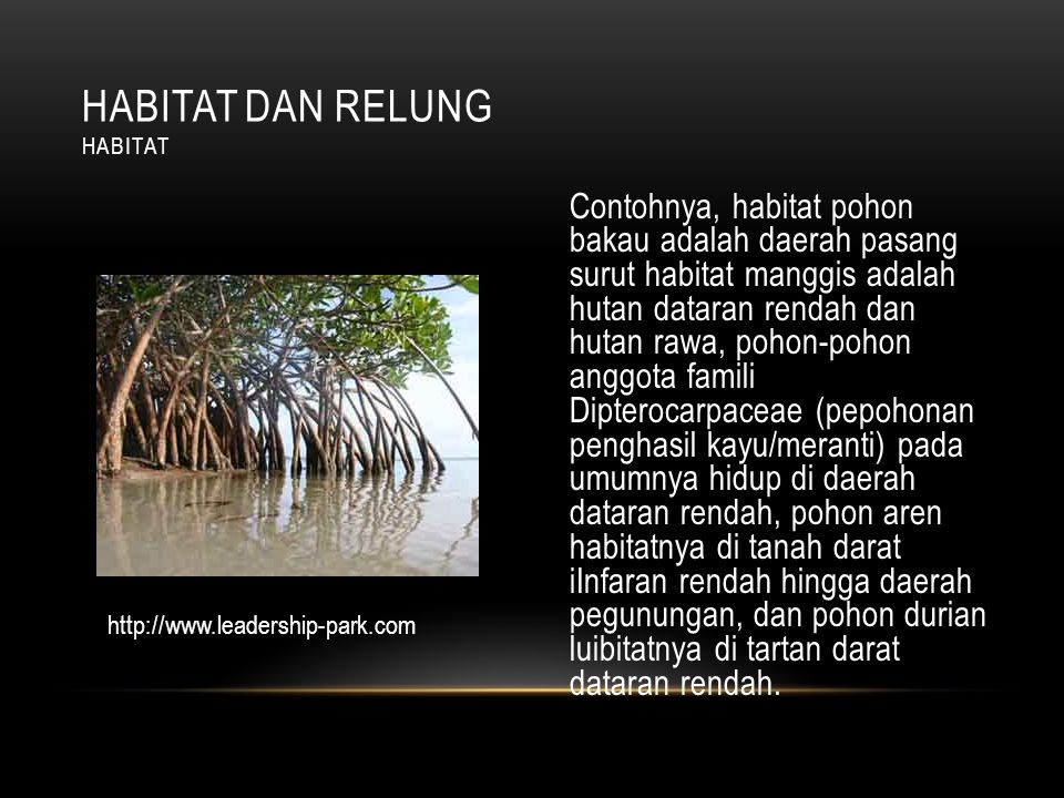 Habitat dan relung Habitat