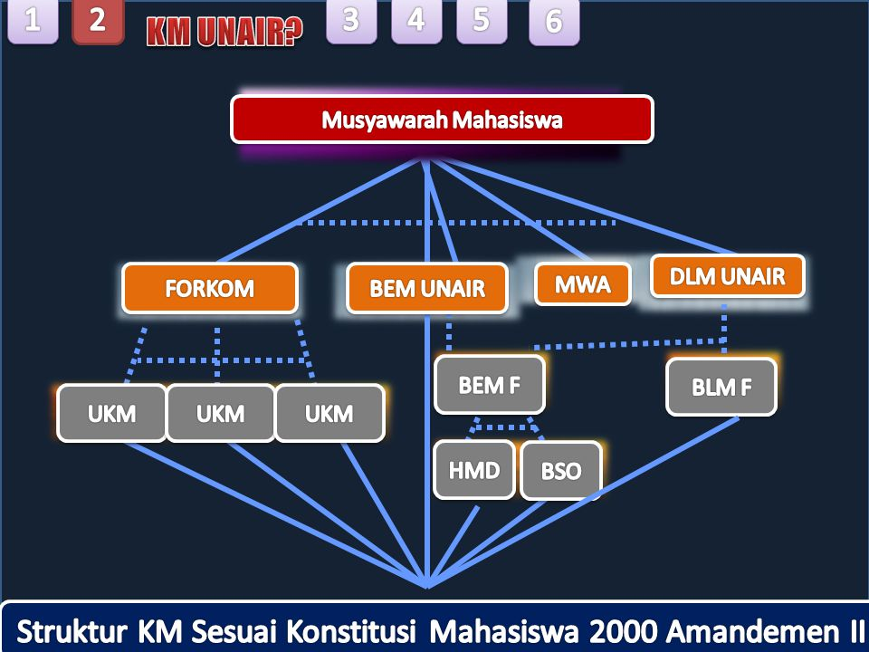 Struktur KM Sesuai Konstitusi Mahasiswa 2000 Amandemen II