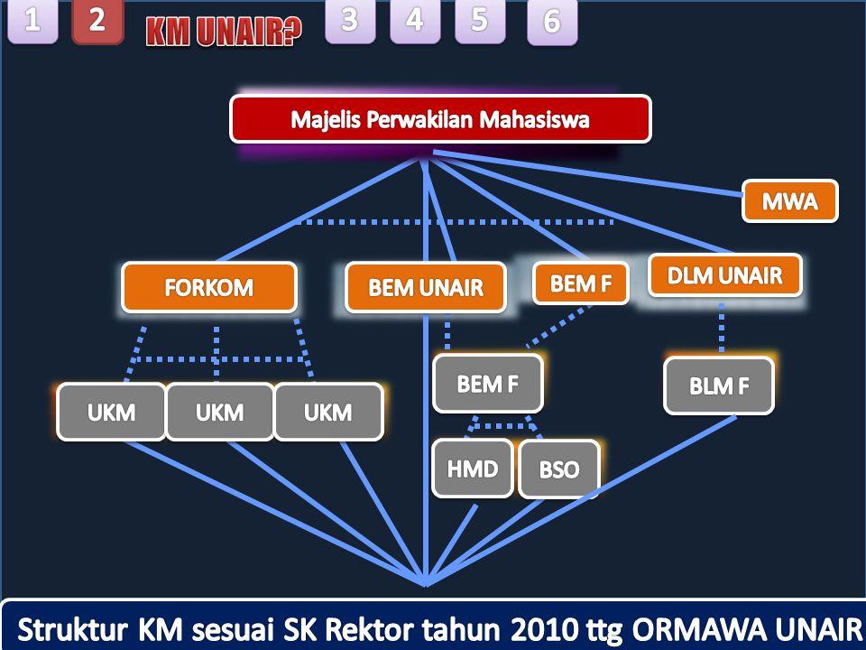 Struktur KM sesuai SK Rektor tahun 2010 ttg ORMAWA UNAIR