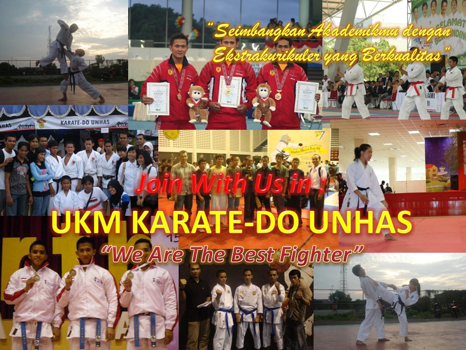 We Are The Best Fighter