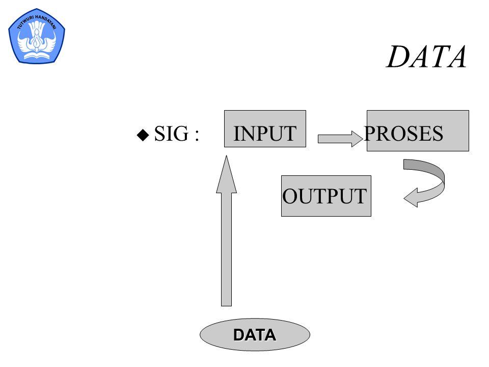DATA SIG : INPUT PROSES OUTPUT DATA