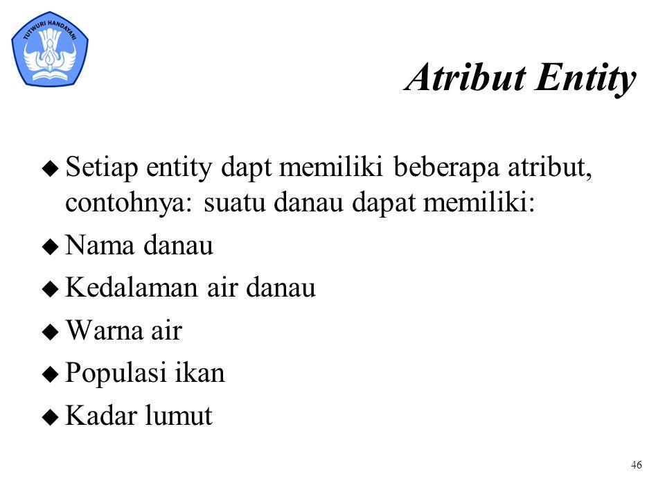 Atribut Entity Setiap entity dapt memiliki beberapa atribut, contohnya: suatu danau dapat memiliki: