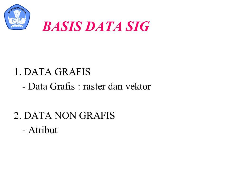 BASIS DATA SIG 1. DATA GRAFIS - Data Grafis : raster dan vektor
