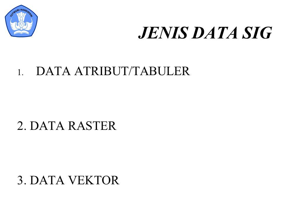 JENIS DATA SIG DATA ATRIBUT/TABULER 2. DATA RASTER 3. DATA VEKTOR