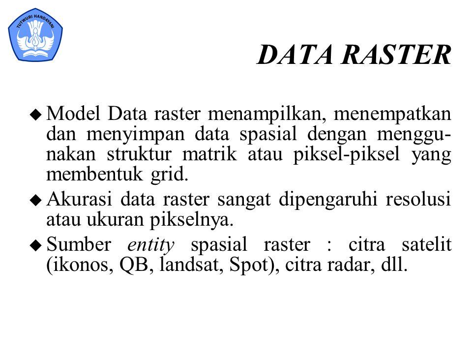 DATA RASTER
