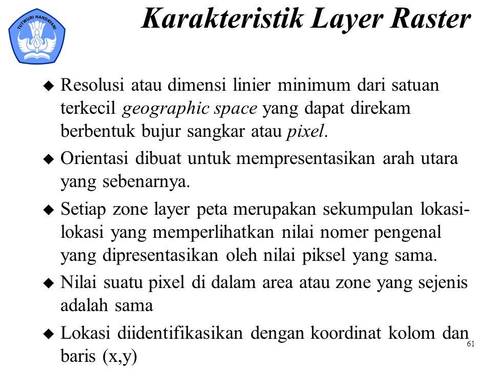 Karakteristik Layer Raster