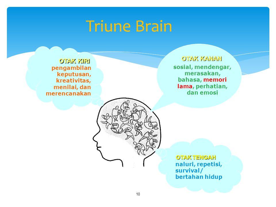 merasakan, bahasa, memori lama, perhatian, dan emosi