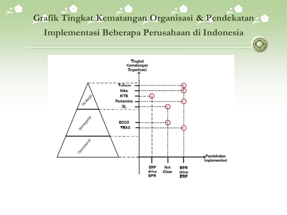 Grafik Tingkat Kematangan Organisasi & Pendekatan Implementasi Beberapa Perusahaan di Indonesia