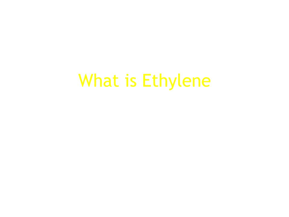 What is Ethylene
