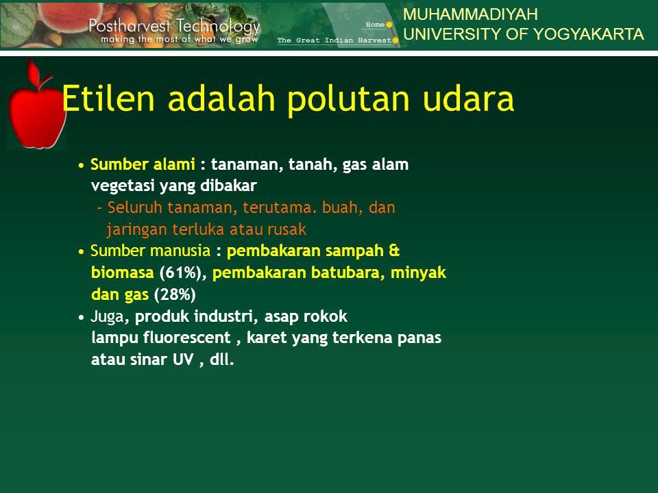 Etilen adalah polutan udara