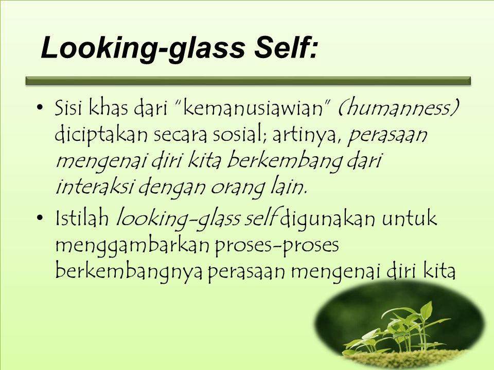 Looking-glass Self: