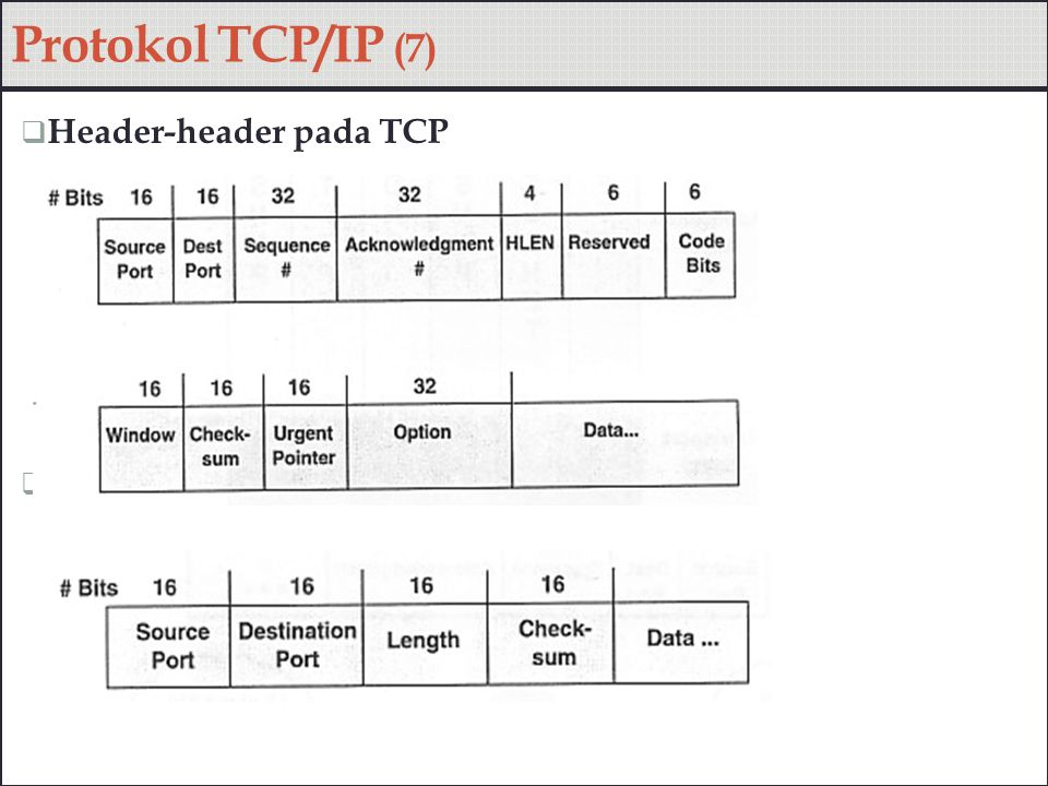 Protokol TCP/IP (7) Header-header pada TCP Header-header pada UDP