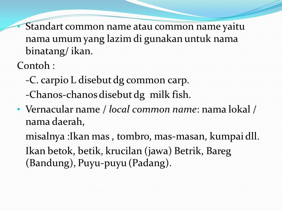 Standart common name atau common name yaitu nama umum yang lazim di gunakan untuk nama binatang/ ikan.