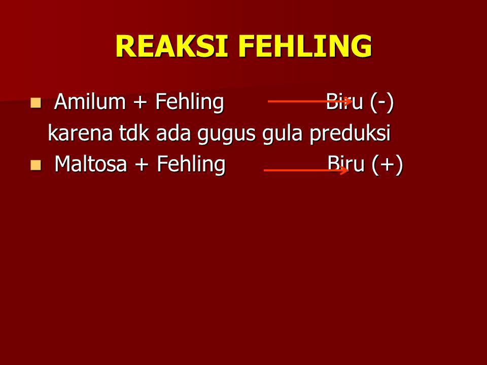 REAKSI FEHLING Amilum + Fehling Biru (-)