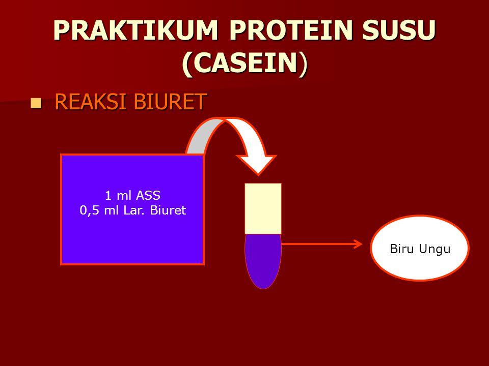PRAKTIKUM PROTEIN SUSU (CASEIN)