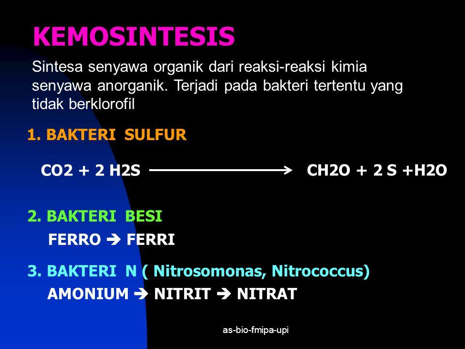 KEMOSINTESIS Sintesa senyawa organik dari reaksi-reaksi kimia senyawa anorganik. Terjadi pada bakteri tertentu yang tidak berklorofil.