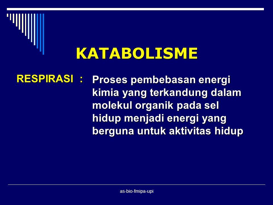 KATABOLISME RESPIRASI :
