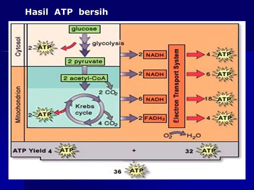 Hasil ATP bersih as-bio-fmipa-upi