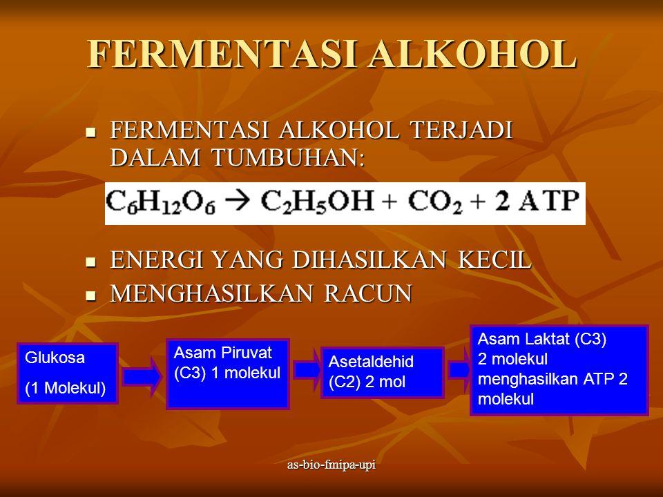 FERMENTASI ALKOHOL FERMENTASI ALKOHOL TERJADI DALAM TUMBUHAN: