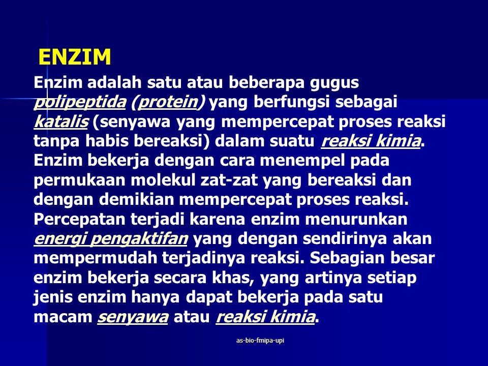 ENZIM